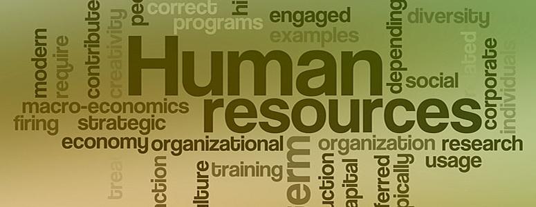 international journal of human resource management pdf